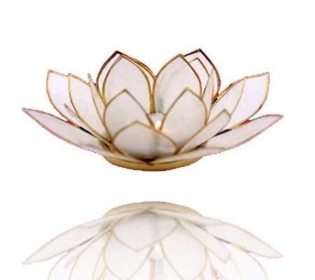 Lotus Atmospherisches Licht Goldrand natur
